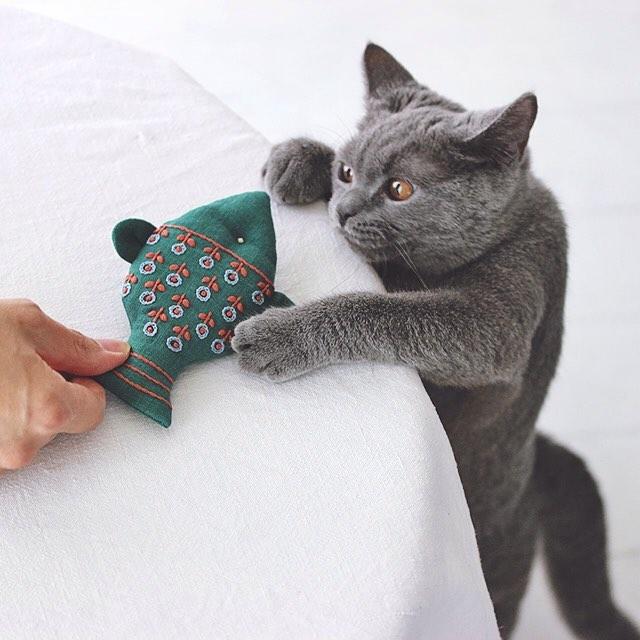 猫咪面具手工制作