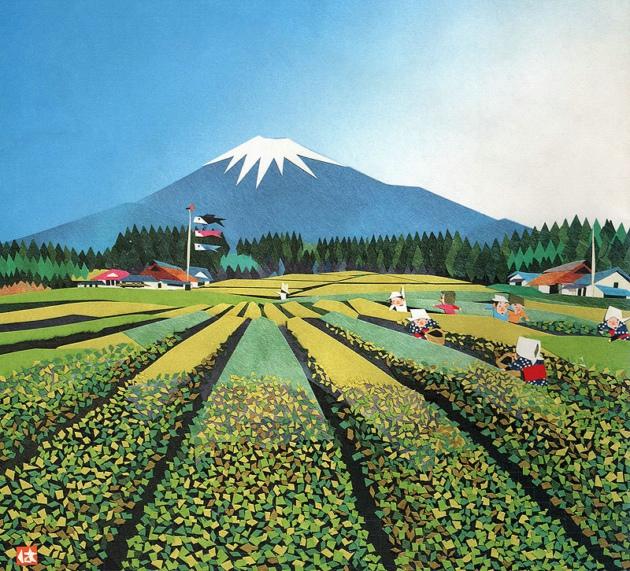 壁纸 成片种植 风景 植物 种植基地 桌面 630_571